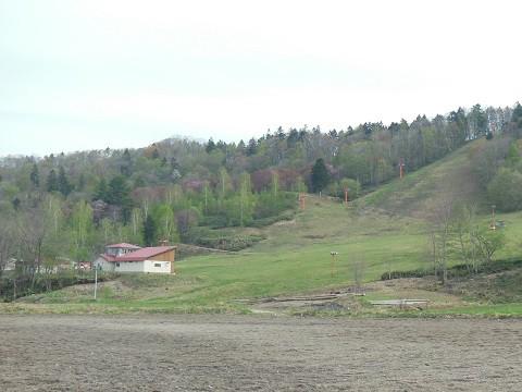 5月4日 滝上町 今日の濁川方面・・・葉桜になってしまいました。
