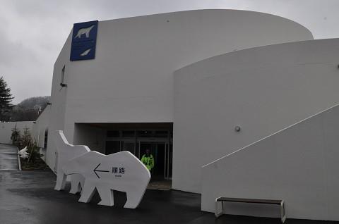 ちょっと懐かしい写真・・・4月7日 円山動物園 ホッキョクグマ