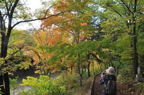 10月8日 滝上町 今日の錦仙峡・・・2 秋歩こう錦仙峡に参加 後編