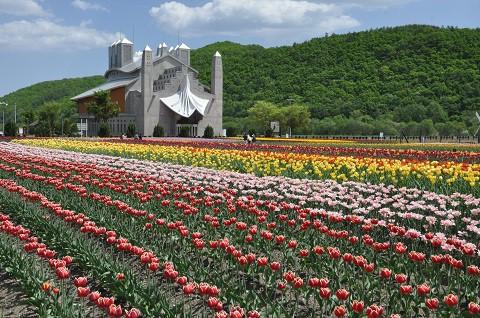 5月23日 湧別町 かみゆうべつチューリップ公園へ行ってきました