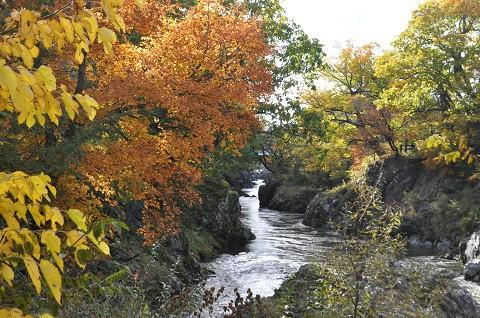10月13日 滝上町 今日の渚滑川渓谷遊歩道錦仙峡・・・2