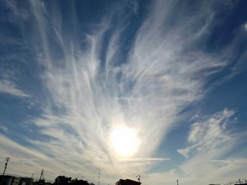 曇りと雨の間の青空は・・・