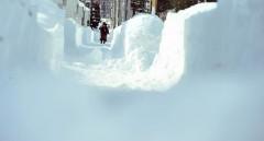 豪雪に助け人現る