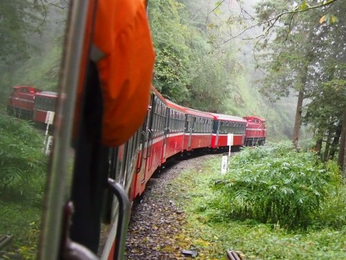 2011台湾ぐるり一周の旅vol.8~阿里山登山鉄道で御来光を・・~