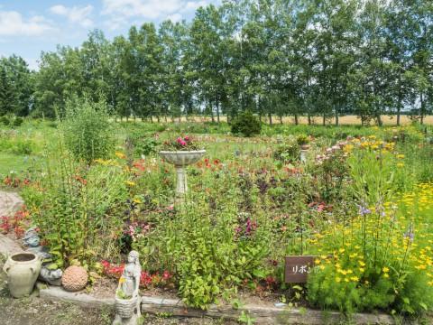 気分転換に・・夏の花盛り「紫竹ガーデン」へ