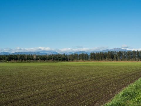 ここ数日の冷え込みで・・日高山脈の高い山(カムエクなど)が冠雪!