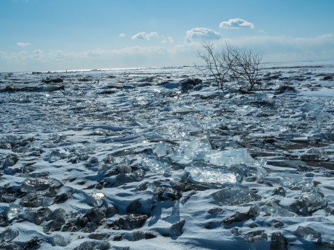 厳冬期、北の大地の芸術品「ジュエリーアイス」見てみませんか?