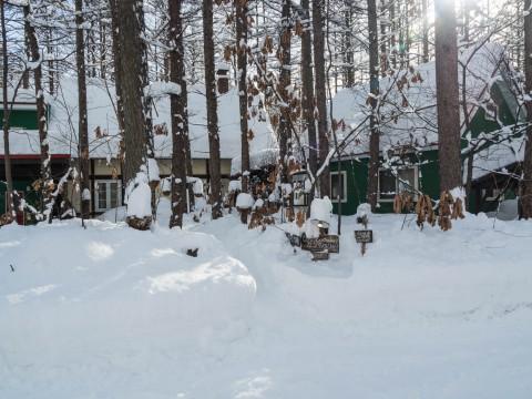 東京で大雪を降らせた低気圧が十勝にもやって来ました。