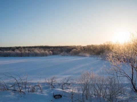 十勝の冬の幻想的な風景~さらべつの霧氷が見頃を迎えています~