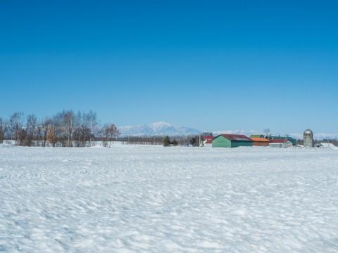 春の日差しが降り注ぐ畑・・でも雪どけはまだまだです。