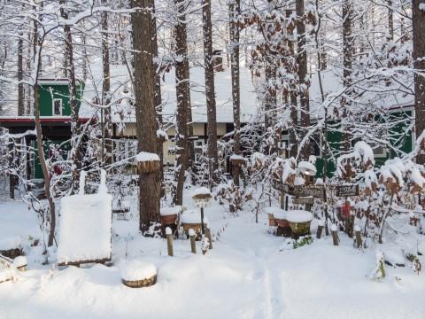 """ついに来ました""""雪景色""""あっという間に""""冬""""ですね!"""