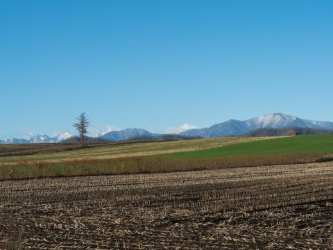 冠雪の日高山脈と晩秋色になった畑のパッチワーク