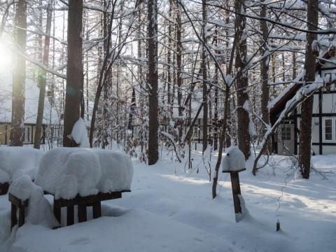 昨日もまた雪・・ついに例年並みの積雪量になりました。