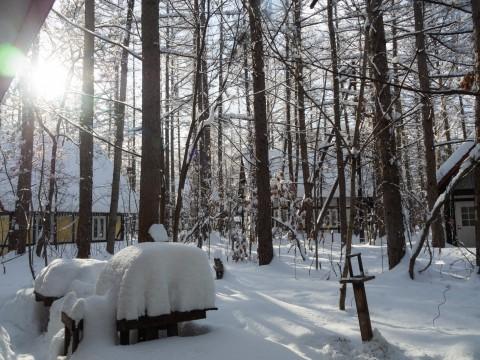今季最大の積雪量に・・結局、冬に降る雪の量は同じ?