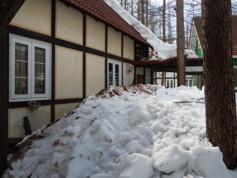今年はじめての10℃越え、屋根の雪も轟音と共に落ちました!
