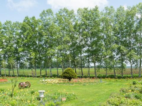 2年振りにチューリップが満開の「紫竹ガーデン」へ!