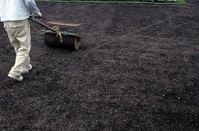 種から芝生をつくる