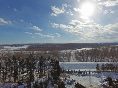 また真冬日の季節がやってきました。