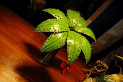 待ってた・・椰子の木の・・