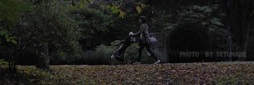カメラ散歩と バンゴハン
