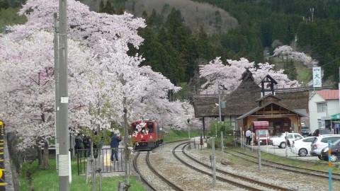 櫻の湯野上温泉駅