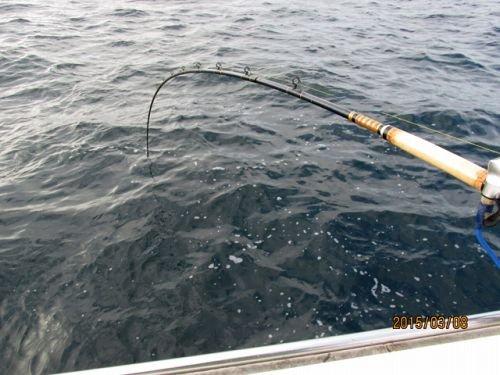 爆釣太平洋宗八カレイ