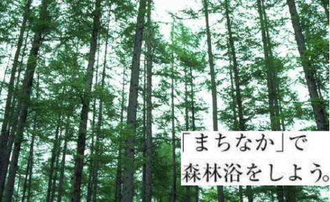 今週末は見学会で森林浴(*^^)v