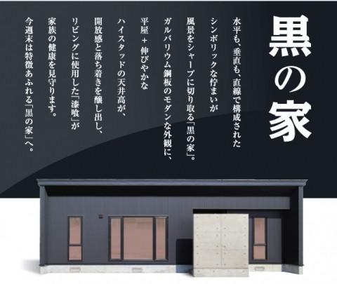 3/15・16 平屋の【黒の家】公開!!