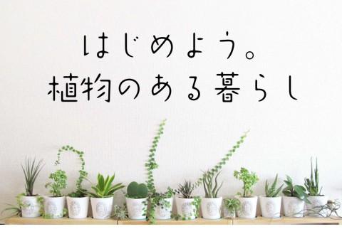 4/28~30『グリーン雑貨販売』『お庭づくり相談会』『家ゼミ』開催します!