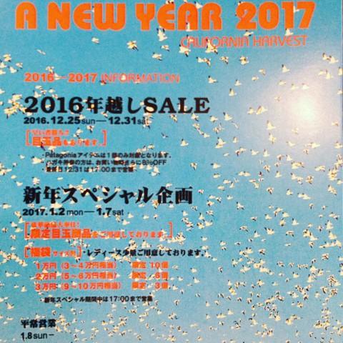 明日も、新年スペシャル企画!!