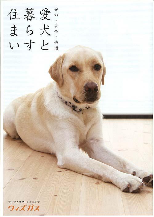 愛犬と楽しく暮らす家づくり~愛犬フェア開催します!