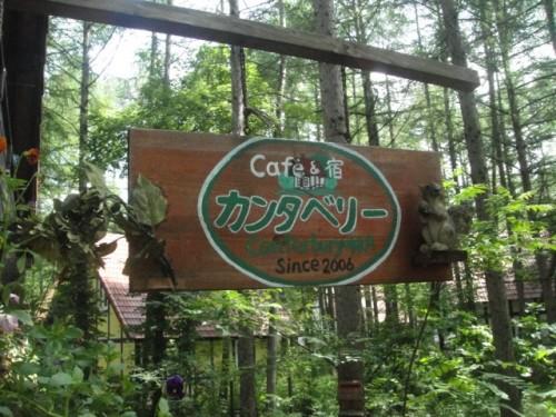 cafe カンタベリーさん♪で森林浴\(^o^)/