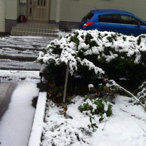 雪!そして9月のオビマのご報告(^^)