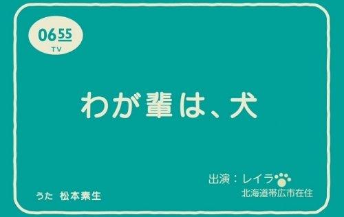 NHKにレイラが出演!?