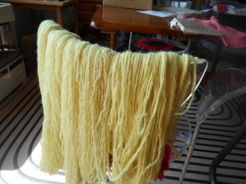 タンポポで手紡ぎ毛糸染めました・・・可愛い色に!