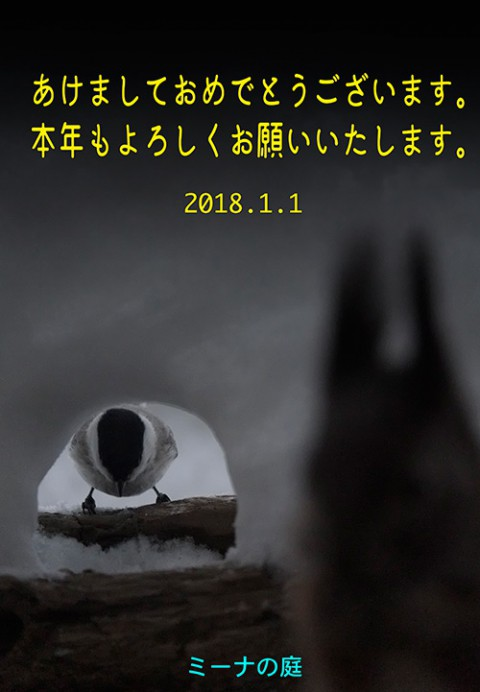 2018年1月1日