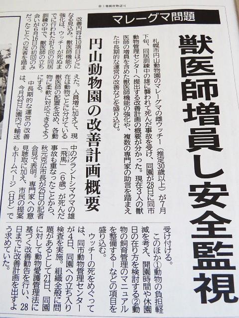 今朝の北海道新聞記事