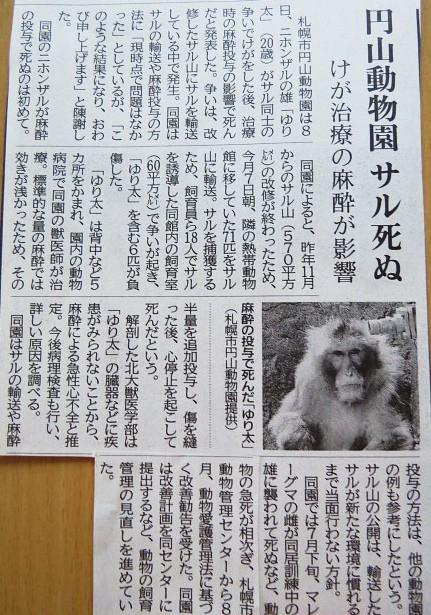 北海道新聞記事より