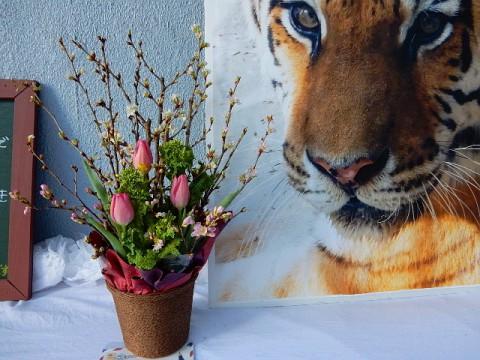 今日のメイメイの献花台
