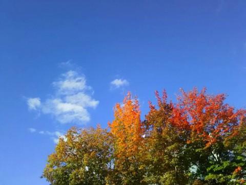 不安定な秋空