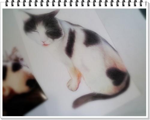 ハートのマークの可愛い子ちゃん~ペット肖像画~
