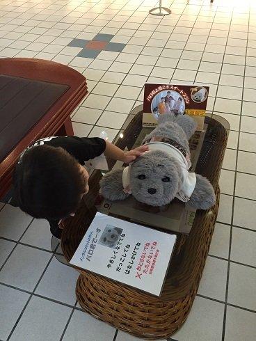 in沖縄ラスト