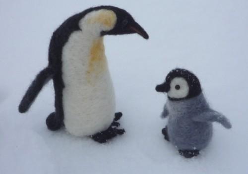 ペンギンの親子。