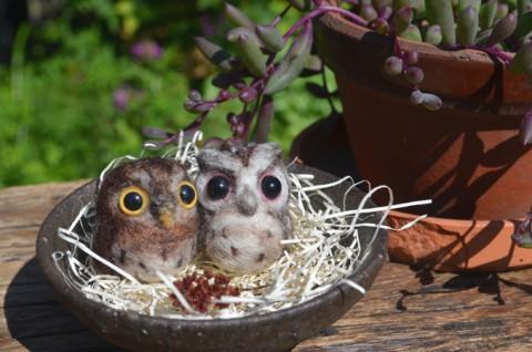 小さなコノハズクの ストラップと 庭の花*
