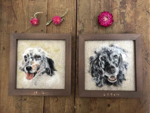 犬の肖像画?! オーダーにて羊毛で描く
