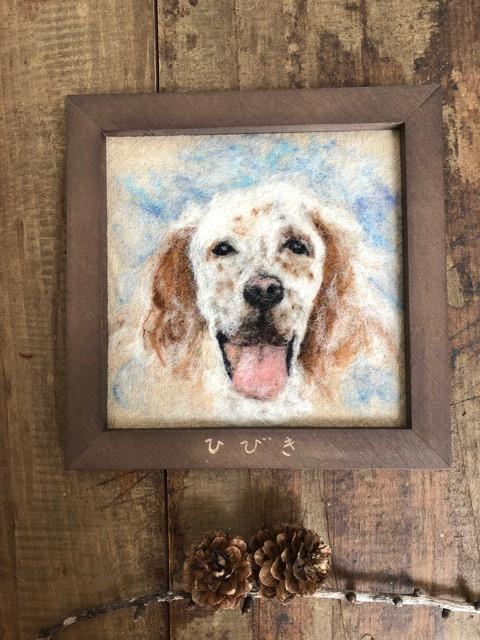 セッター犬のひびき君 羊毛で描く