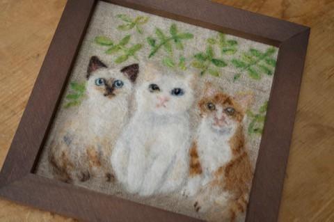 3匹の猫が並んだフレーム^^