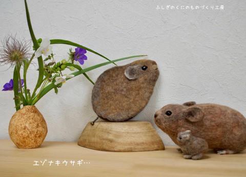エゾナキウサギのポーチ^^