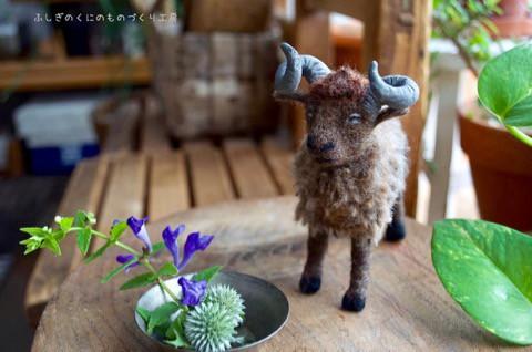 """ツノのあるハンサムな羊 """"ポプケ"""""""