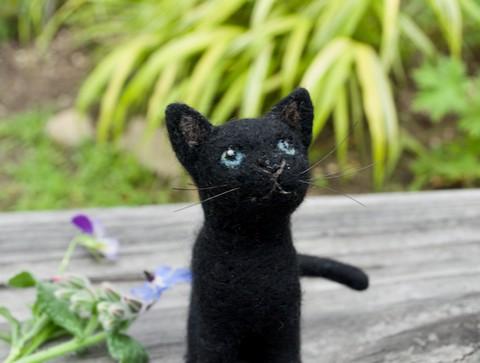 黒猫のクロミちゃんjr.
